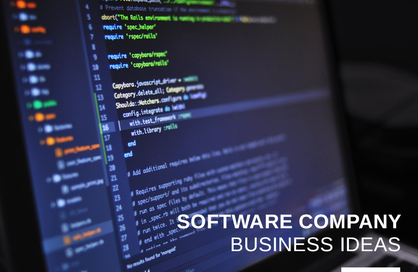 Software Company Business Ideas