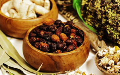 Ayurveda and Traditional Medicine