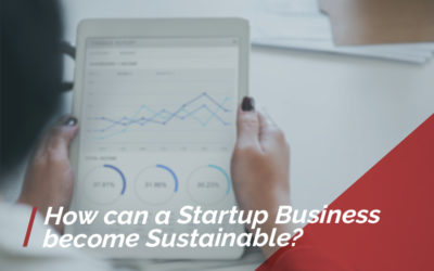 How Can a Startup Business Become Sustainable?
