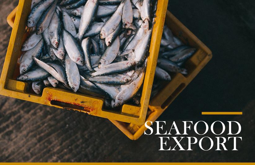 Seafood Export