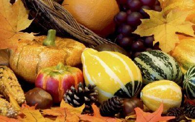 How To Start an Organic Food Restaurant