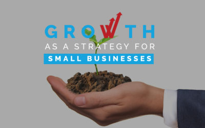 Growth as a Strategy for Small Businesses