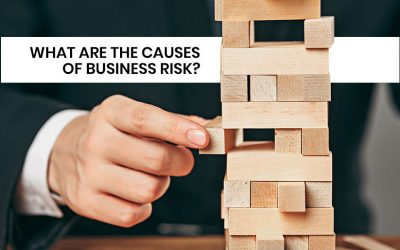 What are the Causes of Business Risk