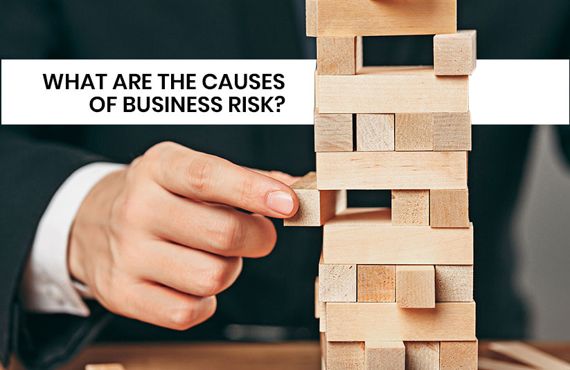 What are the Causes of Business Risk?